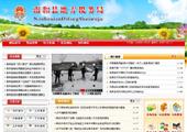 某地税局政务办公网站模板