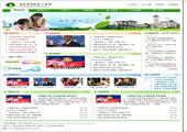 绿色清新学校网站