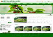 苗圃|林果|苗木|种苗等家农林类网站