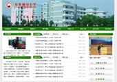 绿色中学网站