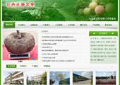 绿色食品企业网站模版