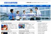 商务调查企业网站模板